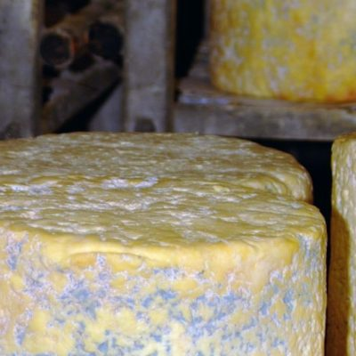 The one and only Dorset Blue Vinny Cheese PGI.
