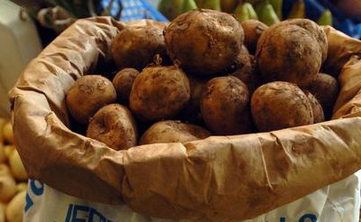 Super spud Pembrokeshire Early Potatoes PGI